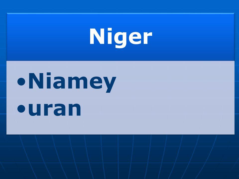 Niger v Bamaku