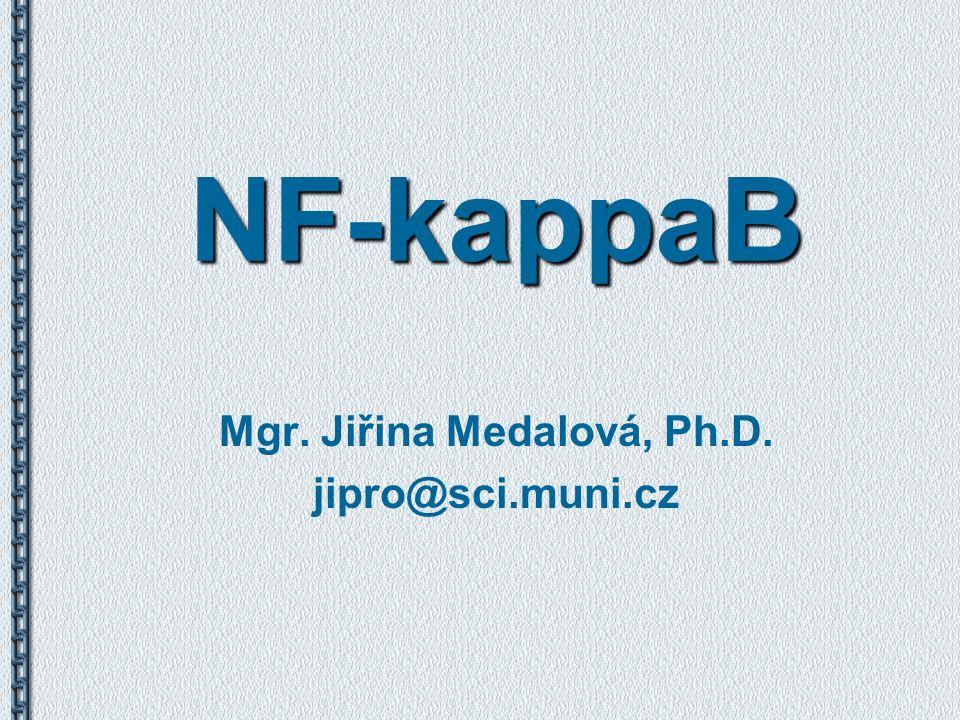 NF-kappaB Mgr. Jiřina Medalová, Ph.D. jipro@sci.muni.cz