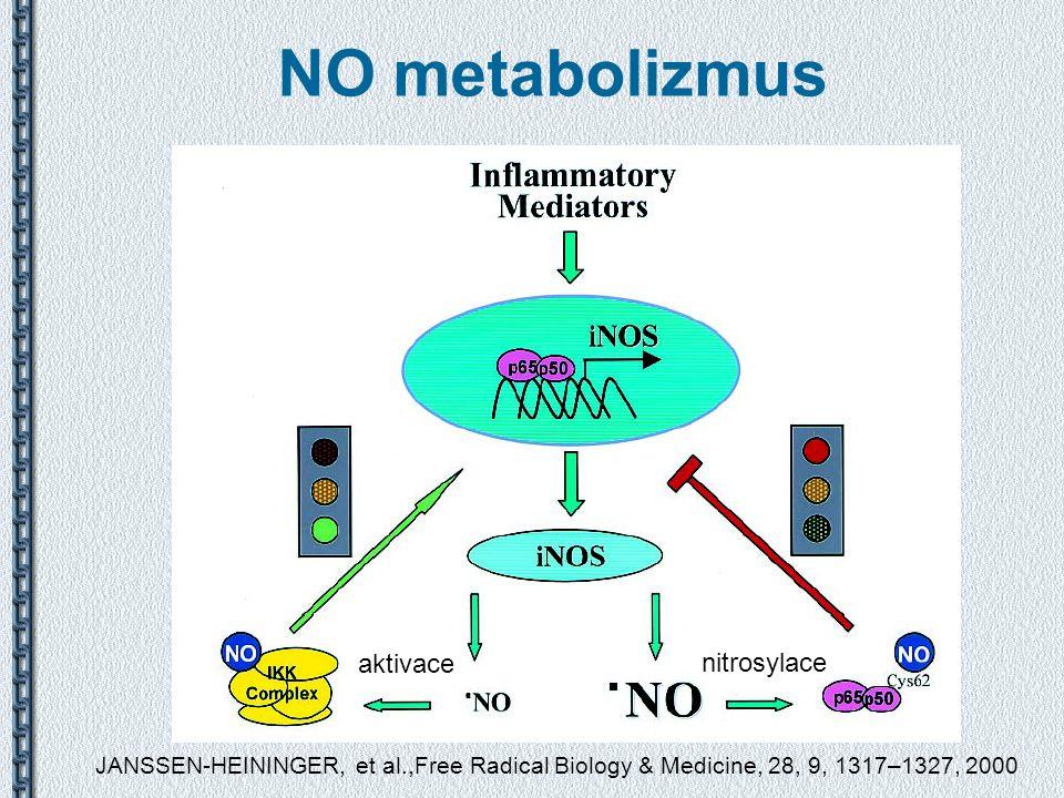 NO metabolizmus JANSSEN-HEININGER, et al.,Free Radical Biology & Medicine, 28, 9, 1317–1327, 2000 nitrosylace aktivace