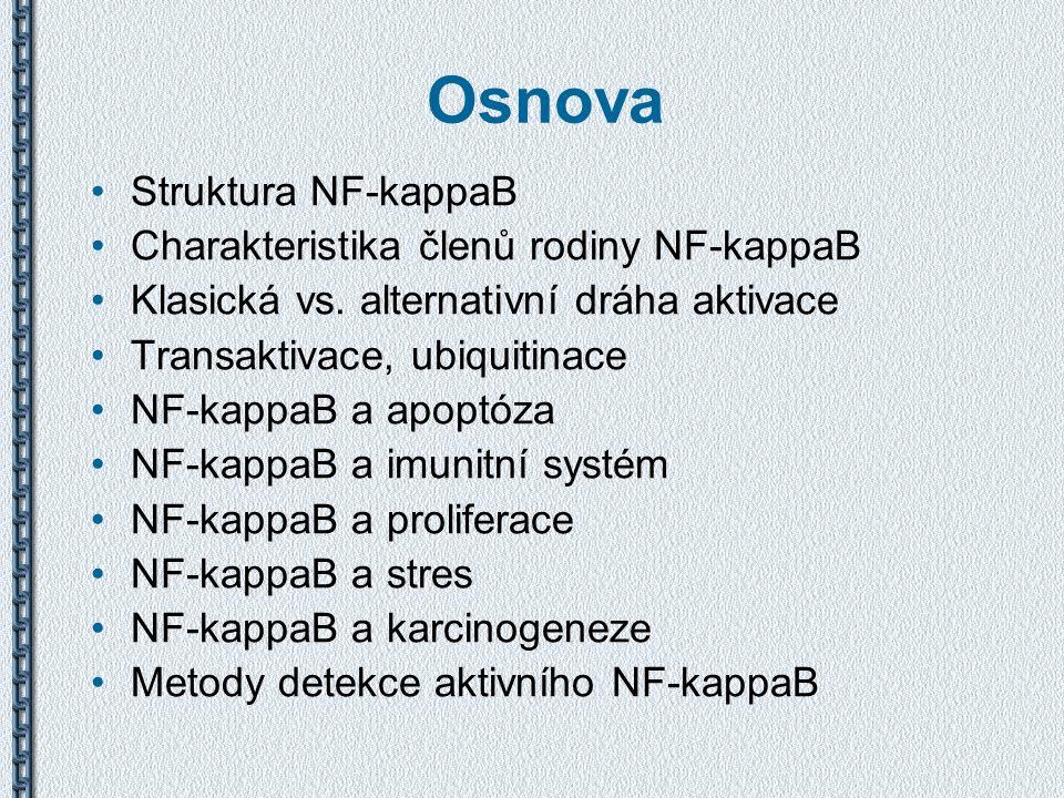 Osnova Struktura NF-kappaB Charakteristika členů rodiny NF-kappaB Klasická vs. alternativní dráha aktivace Transaktivace, ubiquitinace NF-kappaB a apo
