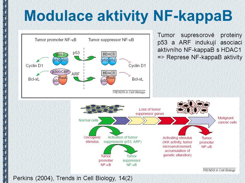 Modulace aktivity NF-kappaB Perkins (2004), Trends in Cell Biology, 14(2) Tumor supresorové proteiny p53 a ARF indukují asociaci aktivního NF-kappaB s