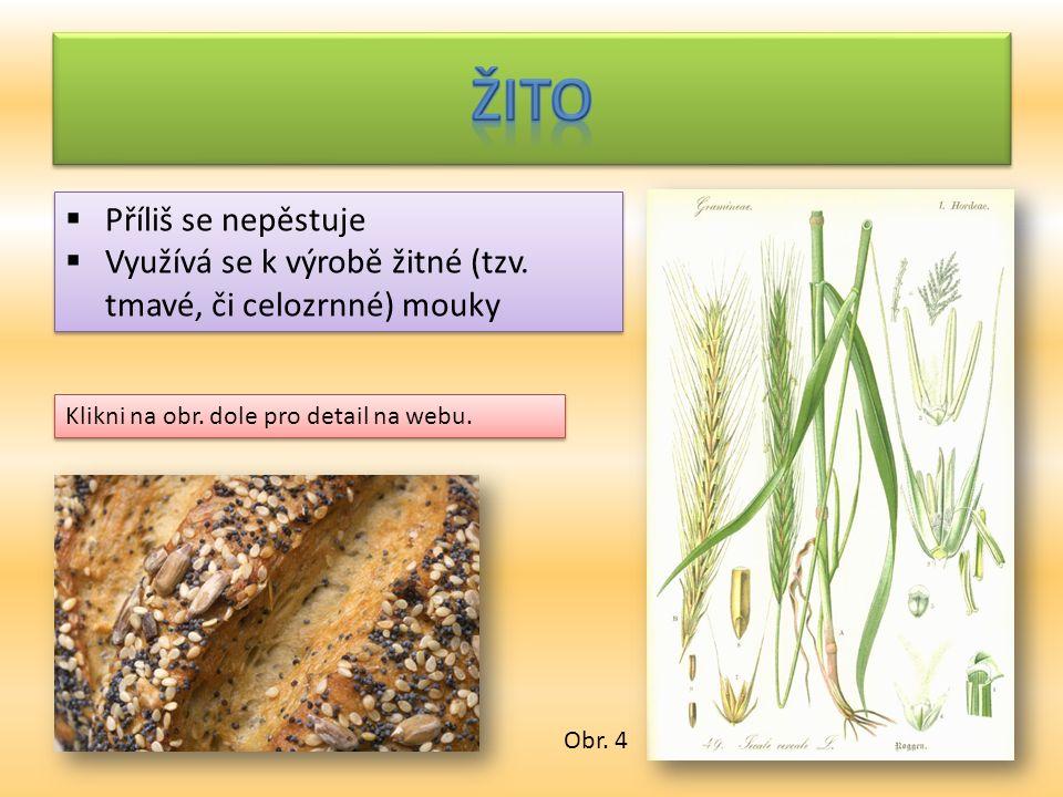  Příliš se nepěstuje  Využívá se k výrobě žitné (tzv. tmavé, či celozrnné) mouky  Příliš se nepěstuje  Využívá se k výrobě žitné (tzv. tmavé, či c