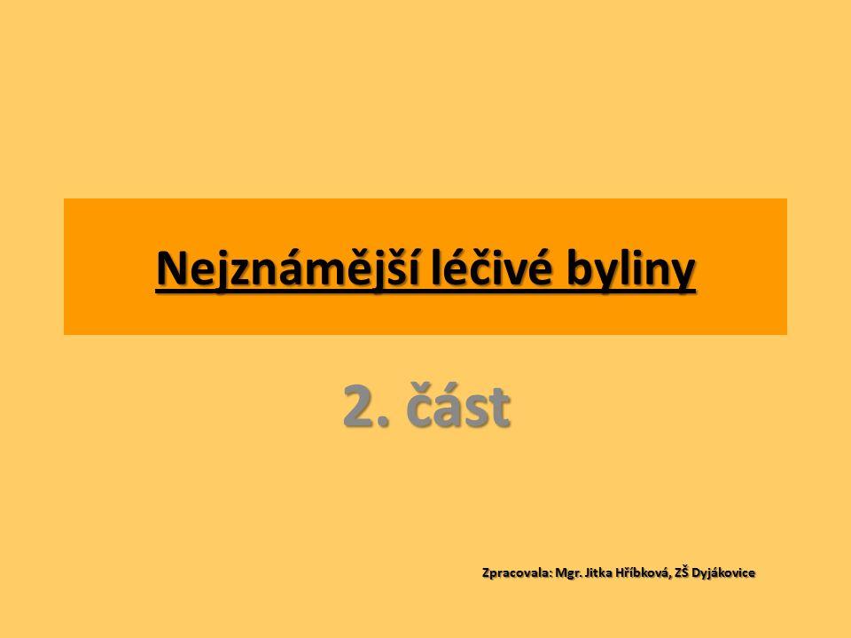 Nejznámější léčivé byliny 2. část Zpracovala: Mgr. Jitka Hříbková, ZŠ Dyjákovice