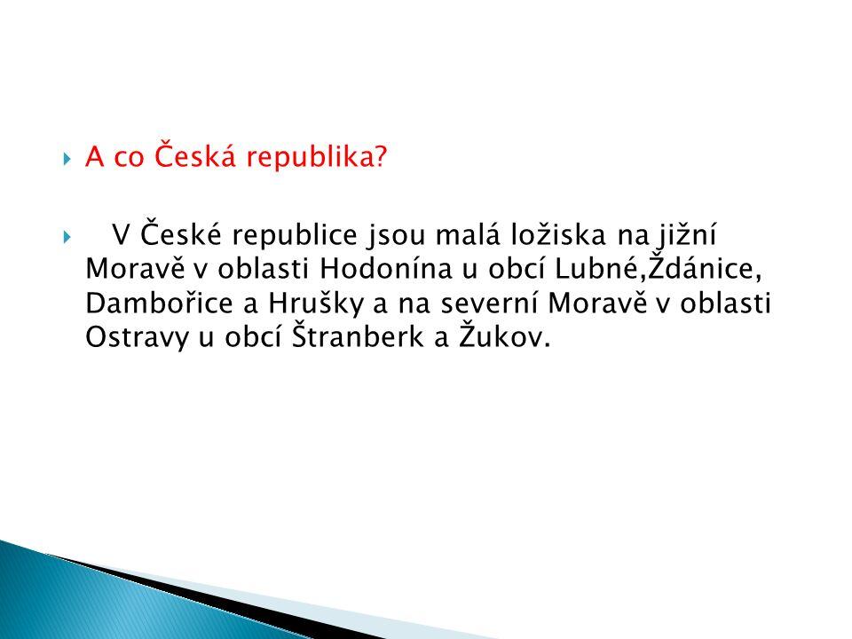  A co Česká republika.