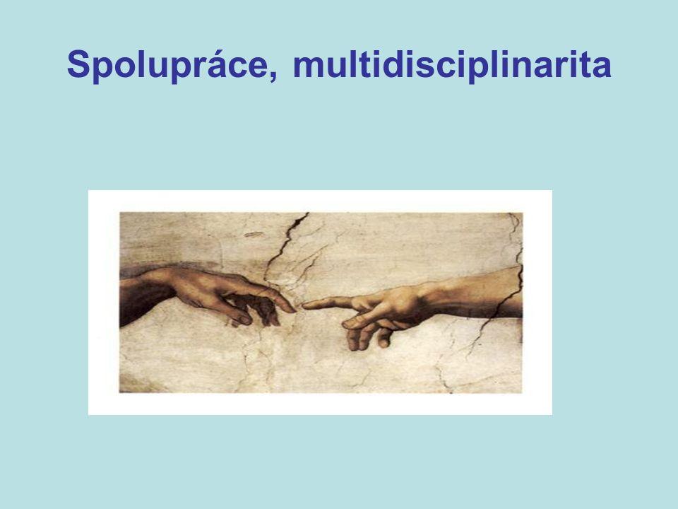 Spolupráce, multidisciplinarita