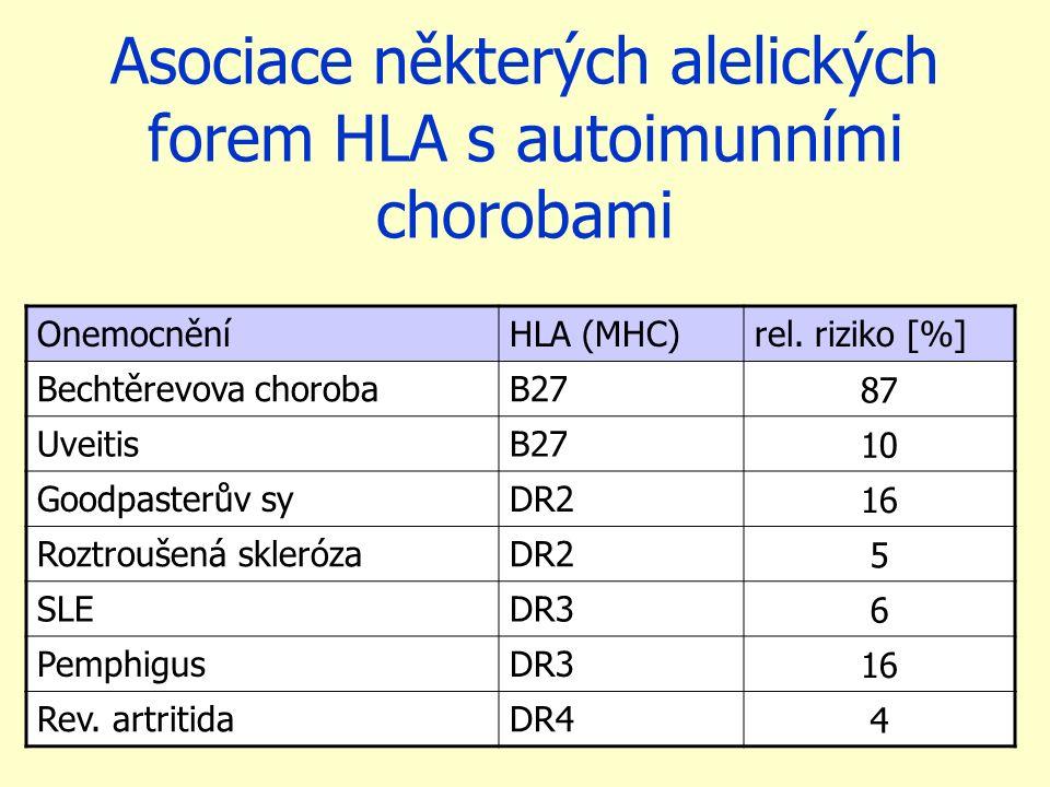 Asociace některých alelických forem HLA s autoimunními chorobami OnemocněníHLA (MHC)rel. riziko [%] Bechtěrevova chorobaB27 87 UveitisB27 10 Goodpaste