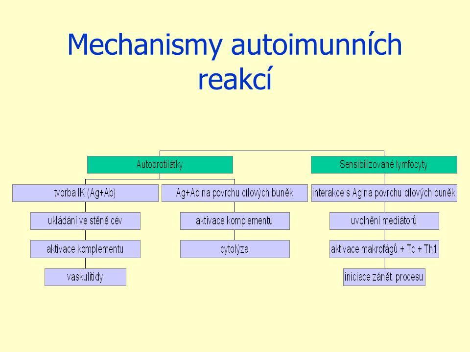 Diagnostika autoimunních chorob Klinická (anamnéza, základní fyz.