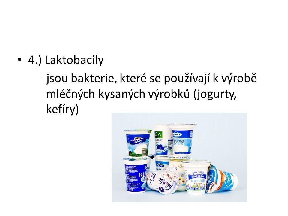 4.) Laktobacily jsou bakterie, které se používají k výrobě mléčných kysaných výrobků (jogurty, kefíry)