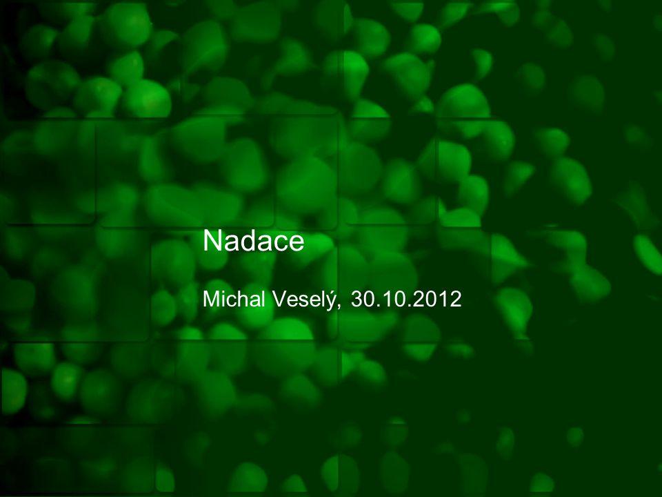 Nadace Michal Veselý, 30.10.2012