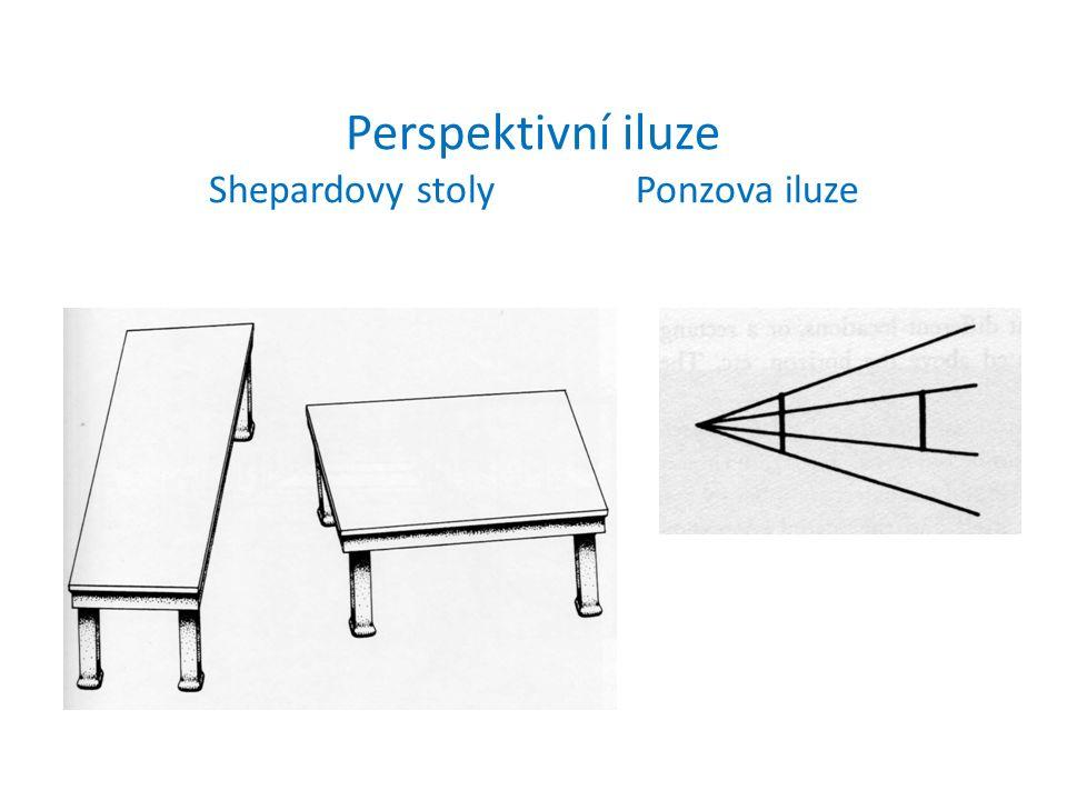 Perspektivní iluze Shepardovy stolyPonzova iluze