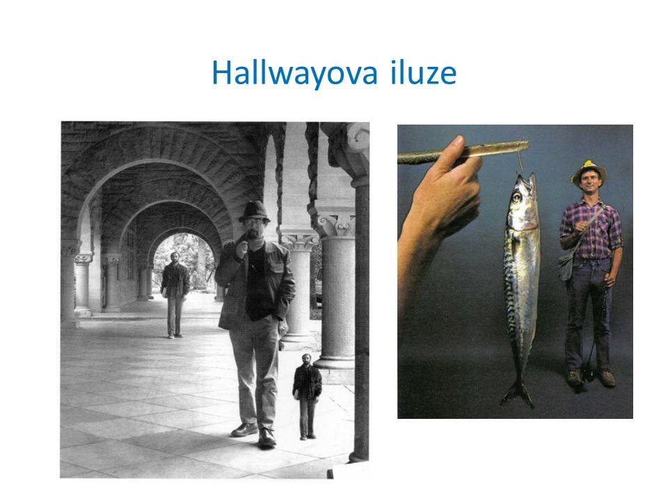 Hallwayova iluze