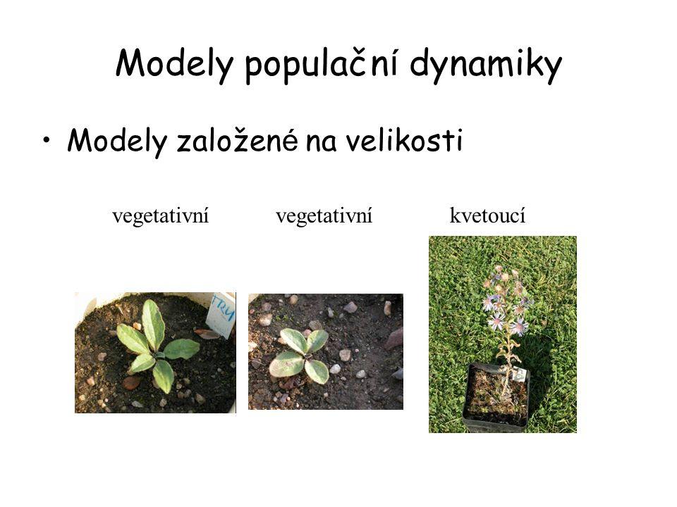 Modely populačn í dynamiky Modely založen é na velikosti kvetoucívegetativní