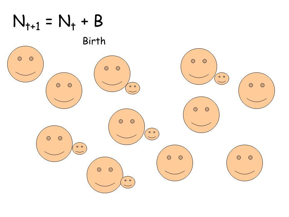 N t+1 = N t + B Birth
