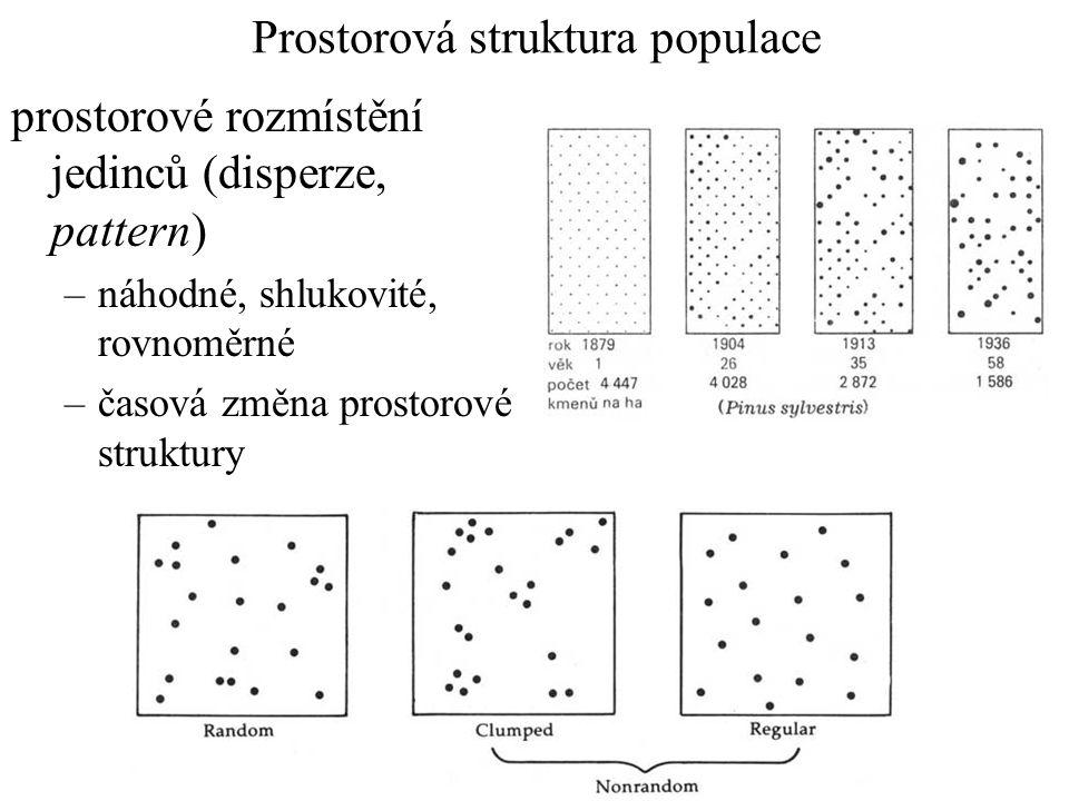 Prostorová struktura populace prostorové rozmístění jedinců (disperze, pattern) –náhodné, shlukovité, rovnoměrné –časová změna prostorové struktury
