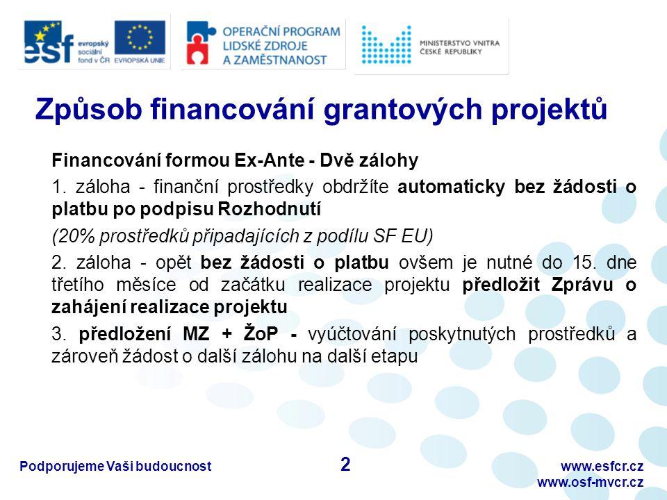 Podporujeme Vaši budoucnostwww.esfcr.cz www.osf-mvcr.cz B) Pracovní výkaz – II.