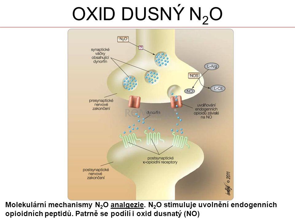 OXID DUSNÝ N 2 O Molekulární mechanismy N 2 O analgezie.