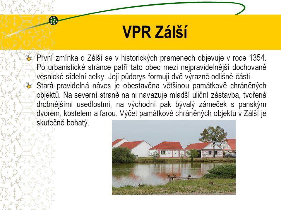 Závěry  U některých otázek se struktura odpovědí výrazně lišila mezi VPZ, VPR a památkou UNESCO (Holašovice).