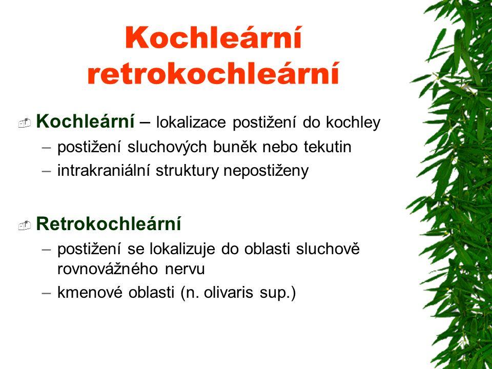 Tradované mýty v problematice závratí Doc MUDr M. Lejska,CSc Humpolec 16.4.2011