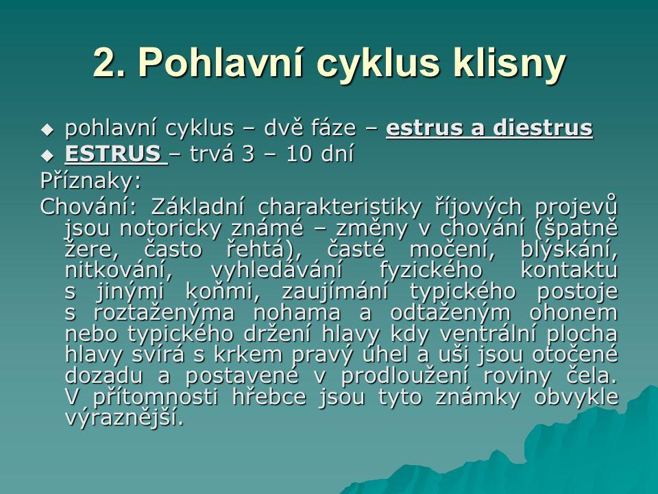 2. Pohlavní cyklus klisny  pohlavní cyklus – dvě fáze – estrus a diestrus  ESTRUS – trvá 3 – 10 dní Příznaky: Chování: Základní charakteristiky říjo
