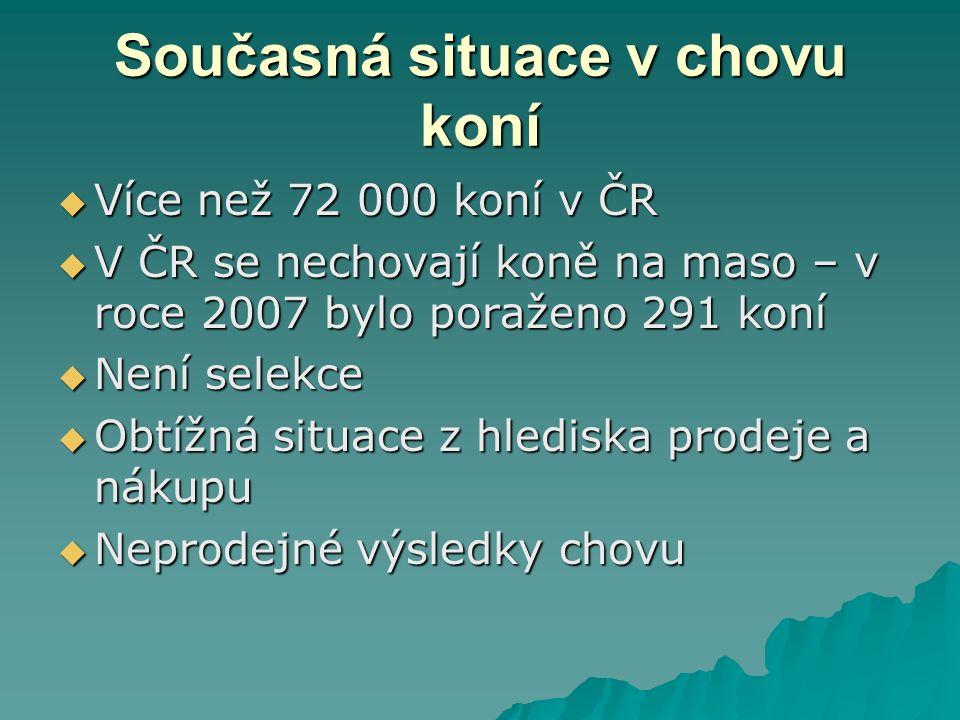 Současná situace v chovu koní  Více než 72 000 koní v ČR  V ČR se nechovají koně na maso – v roce 2007 bylo poraženo 291 koní  Není selekce  Obtíž