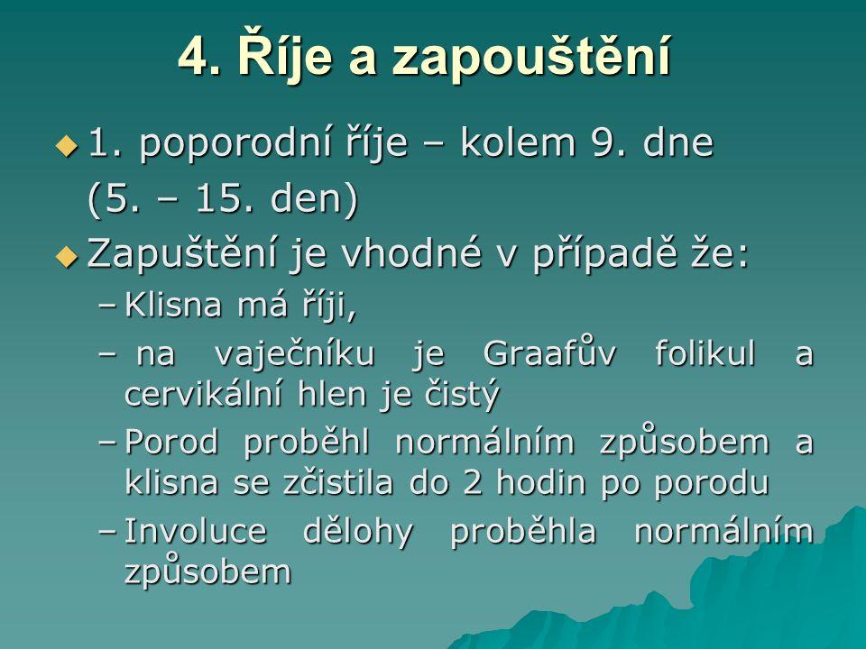 4. Říje a zapouštění  1. poporodní říje – kolem 9. dne (5. – 15. den)  Zapuštění je vhodné v případě že: –Klisna má říji, – na vaječníku je Graafův
