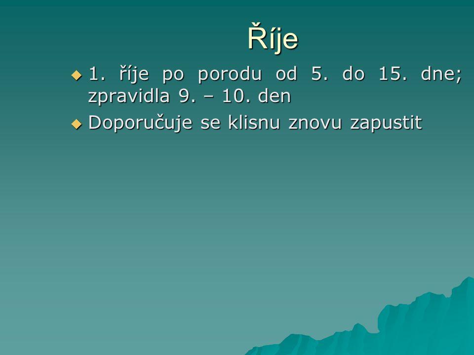 Říje  1. říje po porodu od 5. do 15. dne; zpravidla 9. – 10. den  Doporučuje se klisnu znovu zapustit