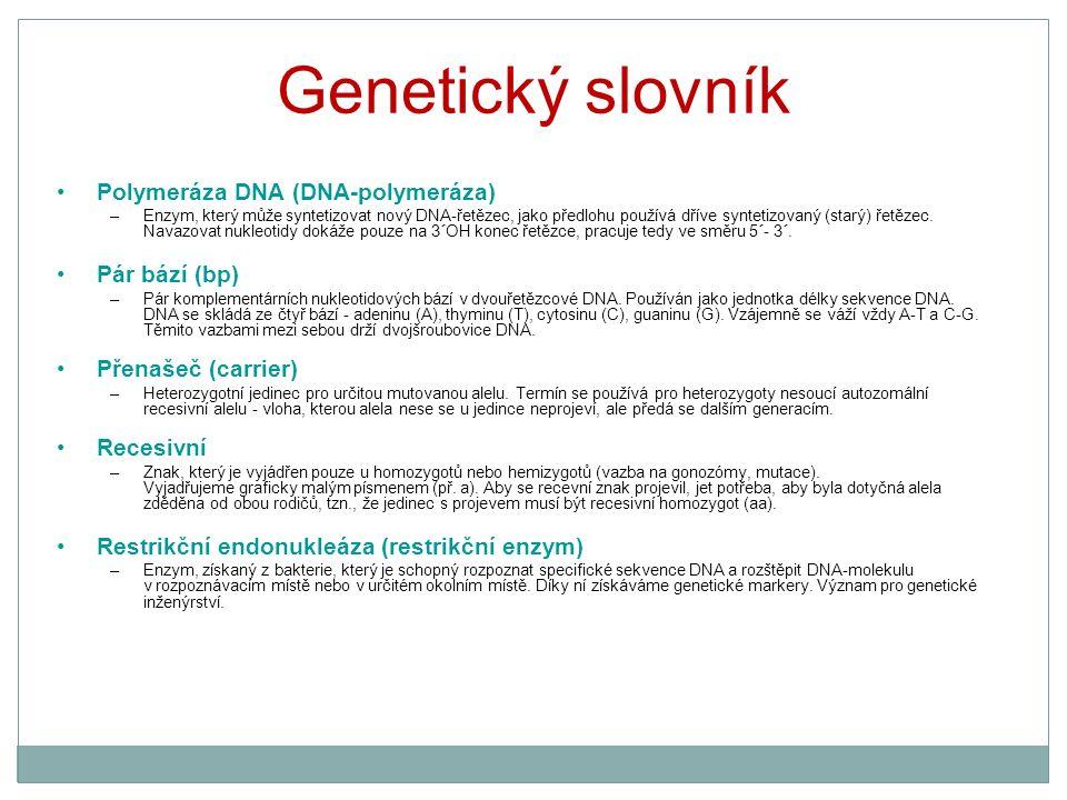 Genetický slovník Polymeráza DNA (DNA-polymeráza) –Enzym, který může syntetizovat nový DNA-řetězec, jako předlohu používá dříve syntetizovaný (starý)