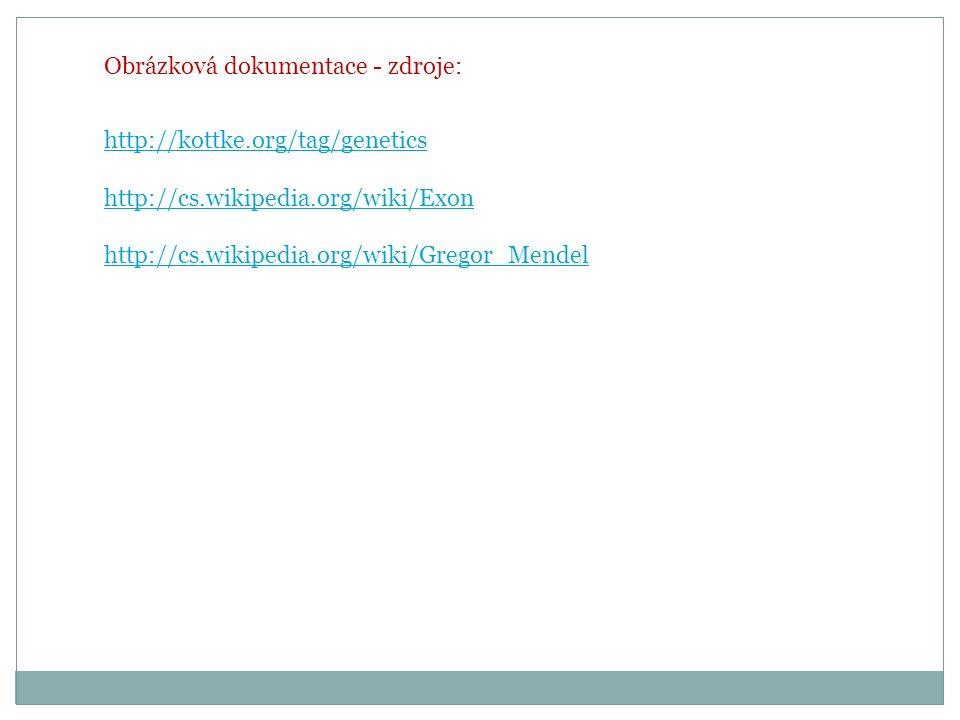 Obrázková dokumentace - zdroje: http://kottke.org/tag/genetics http://cs.wikipedia.org/wiki/Exon http://cs.wikipedia.org/wiki/Gregor_Mendel