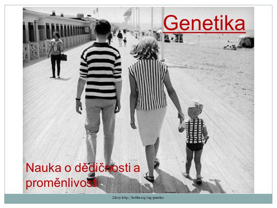 Genetika Nauka o dědičnosti a proměnlivosti Zdroj: http://kottke.org/tag/genetics