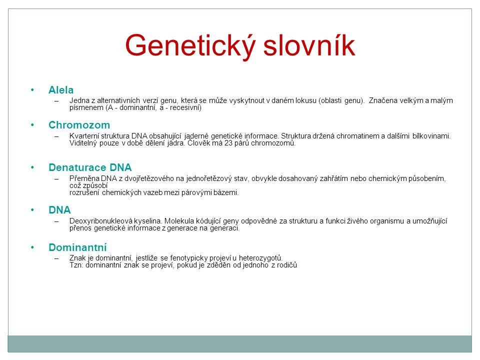 Genetický slovník Alela –Jedna z alternativních verzí genu, která se může vyskytnout v daném lokusu (oblasti genu). Značena velkým a malým písmenem (A