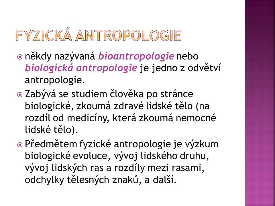 Dělení fyzické antropologie:  paleoantropologie  klinická antropologie - studuje odchylky tělesných parametrů lidských jedinců od normy  etnická antropologie - studuje původ, tělesný vzhled a variabilitu lidských plemen, skupin a národů  auxologie - zabývá se růstem a ontogenezí,  forezní antropologie - posuzuje otcovství, určuje věk, pohlaví a další indicie na základě kosterních pozůstatků  kinantropologie - studuje pohyb a motoriku člověka  primatologie - věda o primátech