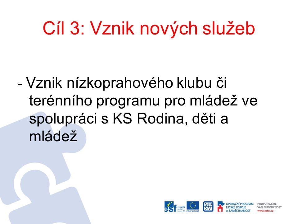 Cíl 3: Vznik nových služeb - Vznik nízkoprahového klubu či terénního programu pro mládež ve spolupráci s KS Rodina, děti a mládež