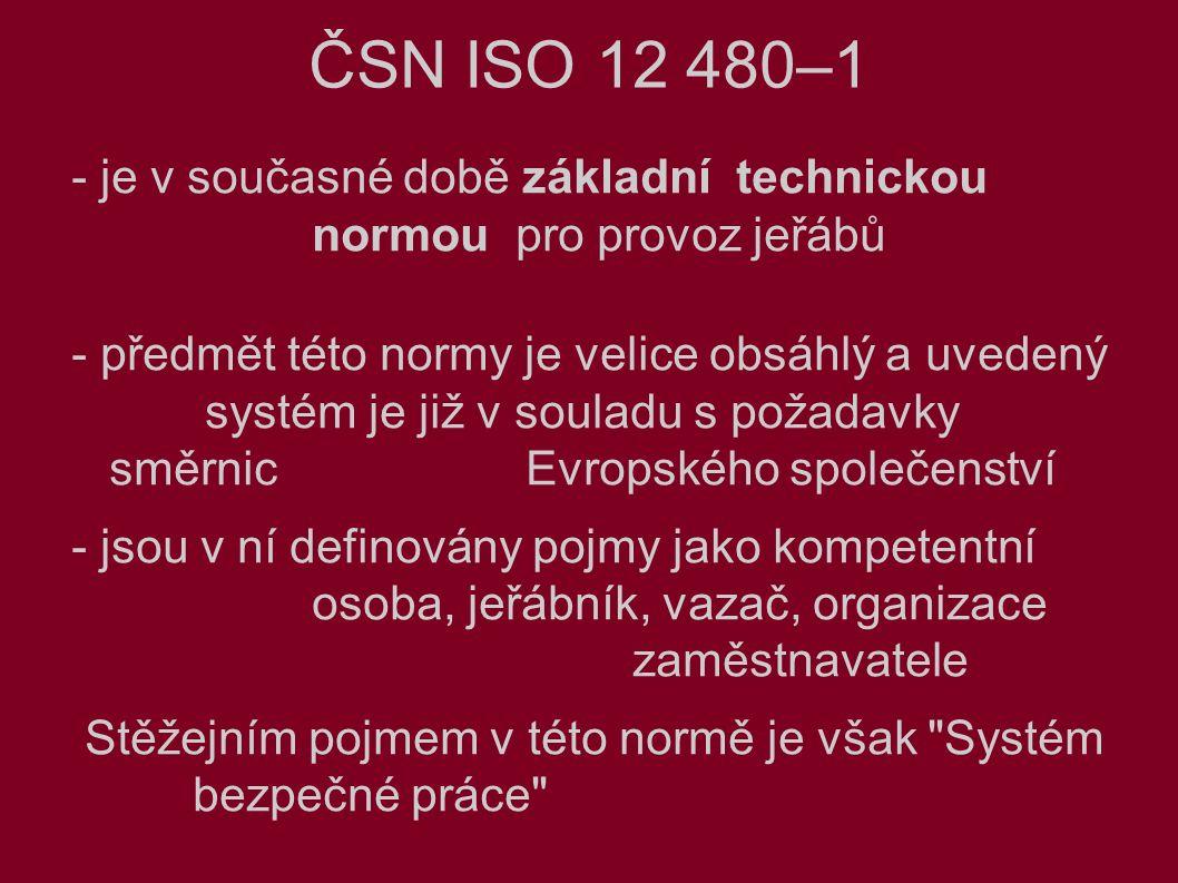 ČSN ISO 12 480–1 - je v současné době základní technickou normou pro provoz jeřábů - předmět této normy je velice obsáhlý a uvedený systém je již v souladu s požadavky směrnic Evropského společenství - jsou v ní definovány pojmy jako kompetentní osoba, jeřábník, vazač, organizace zaměstnavatele Stěžejním pojmem v této normě je však Systém bezpečné práce