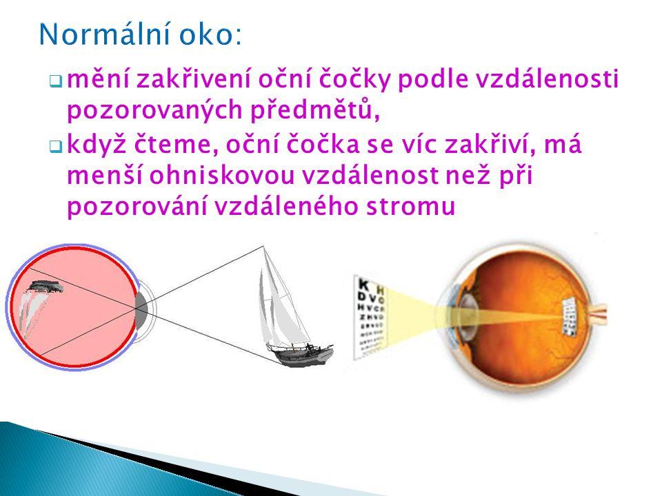  mění zakřivení oční čočky podle vzdálenosti pozorovaných předmětů,  když čteme, oční čočka se víc zakřiví, má menší ohniskovou vzdálenost než při p