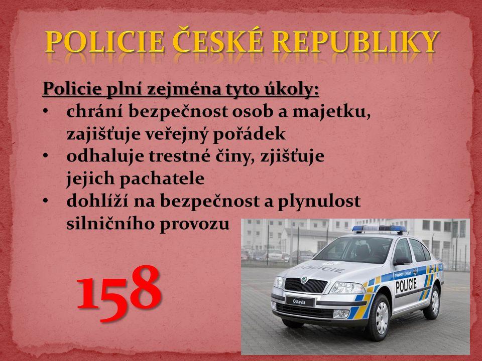 Policie plní zejména tyto úkoly: chrání bezpečnost osob a majetku, zajišťuje veřejný pořádek odhaluje trestné činy, zjišťuje jejich pachatele dohlíží na bezpečnost a plynulost silničního provozu 158