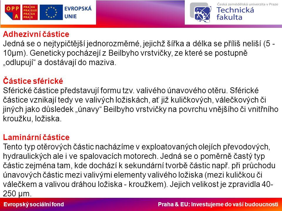 Evropský sociální fond Praha & EU: Investujeme do vaší budoucnosti Adhezivní částice Jedná se o nejtypičtější jednorozměrné, jejichž šířka a délka se příliš neliší (5 - 10µm).