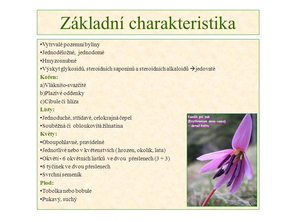 Základní charakteristika Vytrvalé pozemní byliny Jednoděložné, jednodomé Hmyzosnubné Výskyt glykosidů, steroidních saponinů a steroidních alkaloidů 