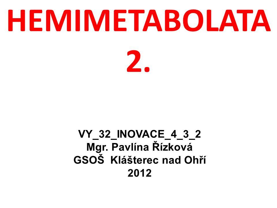 HEMIMETABOLATA 2. VY_32_INOVACE_4_3_2 Mgr. Pavlína Řízková GSOŠ Klášterec nad Ohří 2012