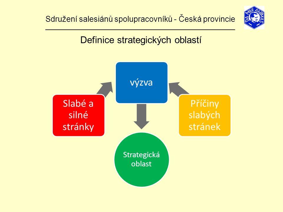 Sdružení salesiánů spolupracovníků - Česká provincie ______________________________________________________________ Definice strategických oblastí Strategická oblast Slabé a silné stránky výzva Příčiny slabých stránek