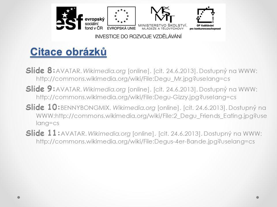 Citace obrázků Slide 8: AVATAR. Wikimedia.org [online].