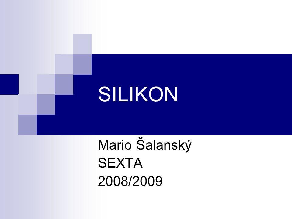 SILIKON Mario Šalanský SEXTA 2008/2009