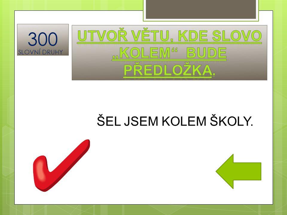 ŠEL JSEM KOLEM ŠKOLY. 300 SLOVNÍ DRUHY