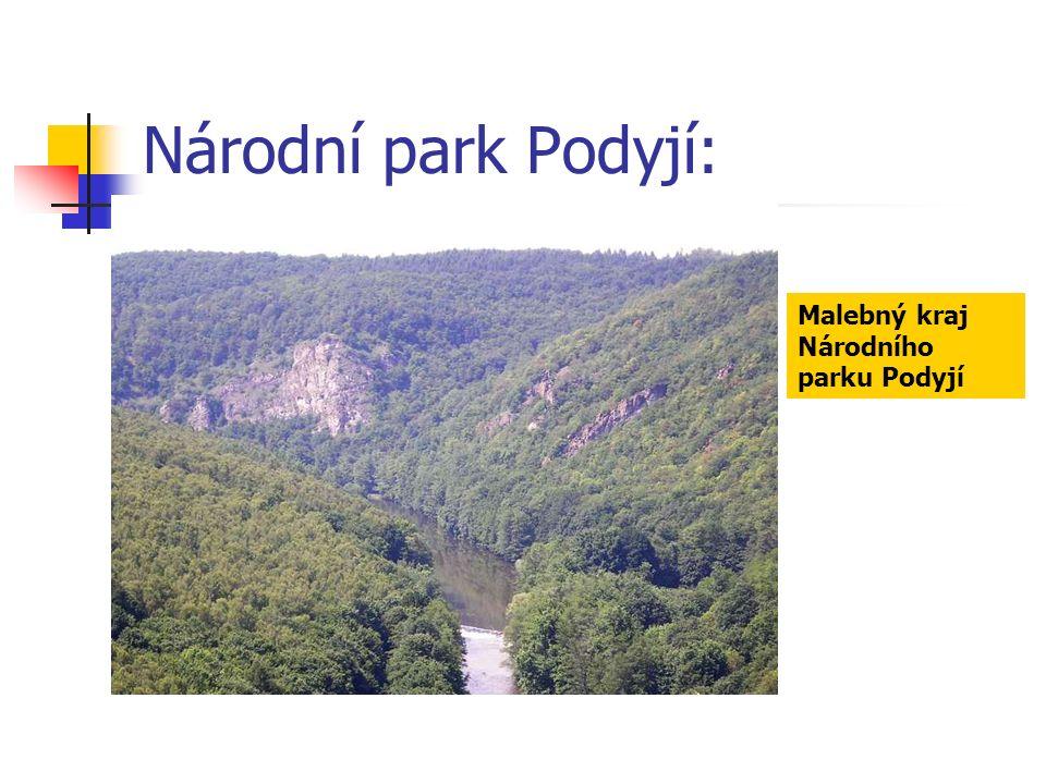 Národní park Podyjí: Malebný kraj Národního parku Podyjí