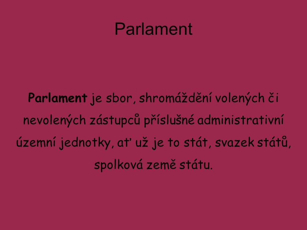 Parlament je sbor, shromáždění volených či nevolených zástupců příslušné administrativní územní jednotky, ať už je to stát, svazek států, spolková země státu.