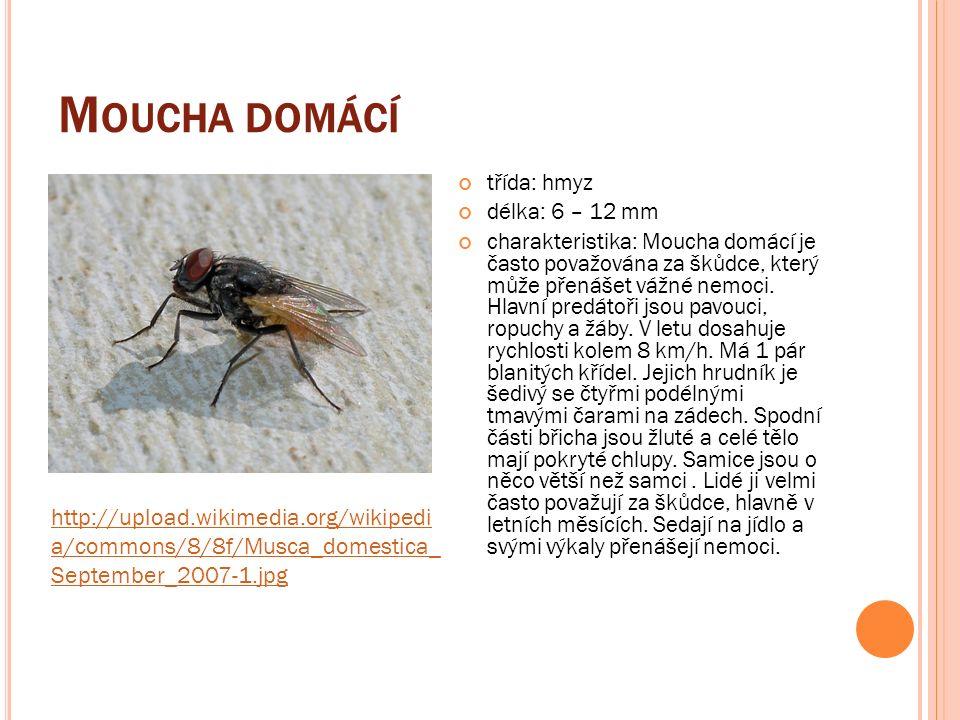 M RAVENCOVITÍ řád: blanokřídlí délka: od několika mm do několika cm charakteristika: žijí v koloniích ve zbudovaných hnízdech, kterým se v češtině obvykle říká mraveniště.