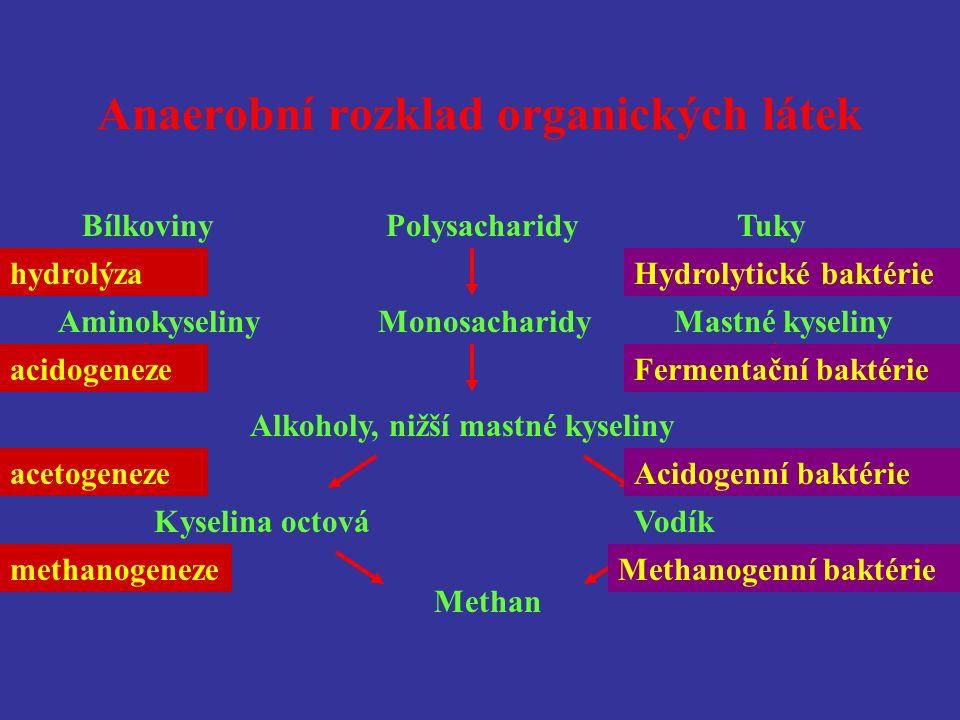 Anaerobní rozklad organických látek Bílkoviny Polysacharidy Tuky Alkoholy, nižší mastné kyseliny Kyselina octováVodík Methan Aminokyseliny Monosacharidy Mastné kyseliny hydrolýza acidogeneze acetogeneze methanogeneze Hydrolytické baktérie Fermentační baktérie Acidogenní baktérie Methanogenní baktérie