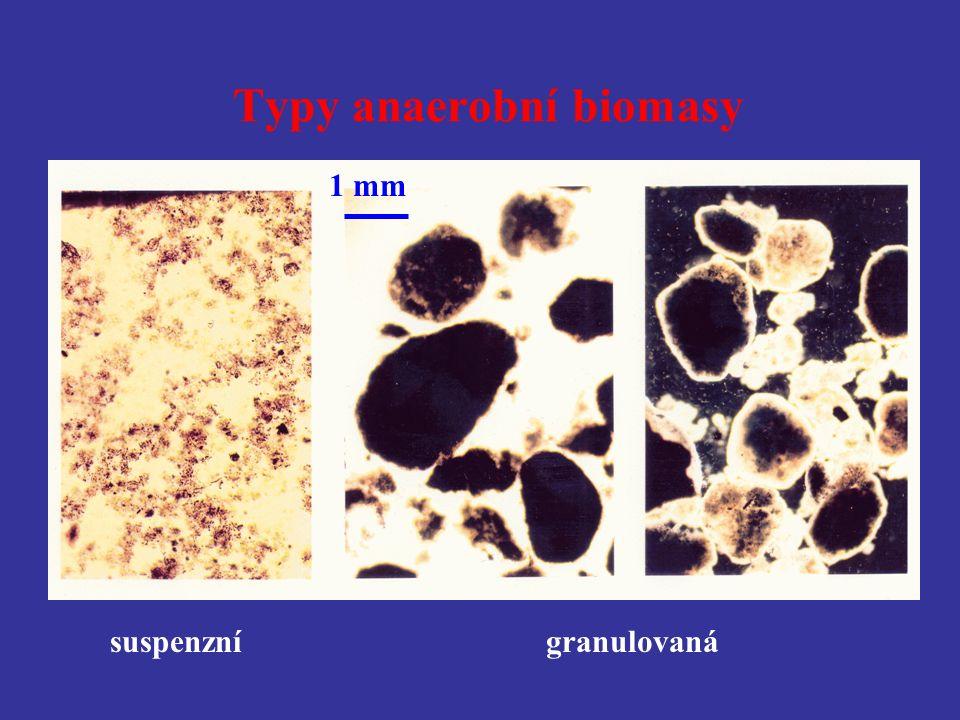Typy anaerobní biomasy granulovaná 1 mm suspenzní