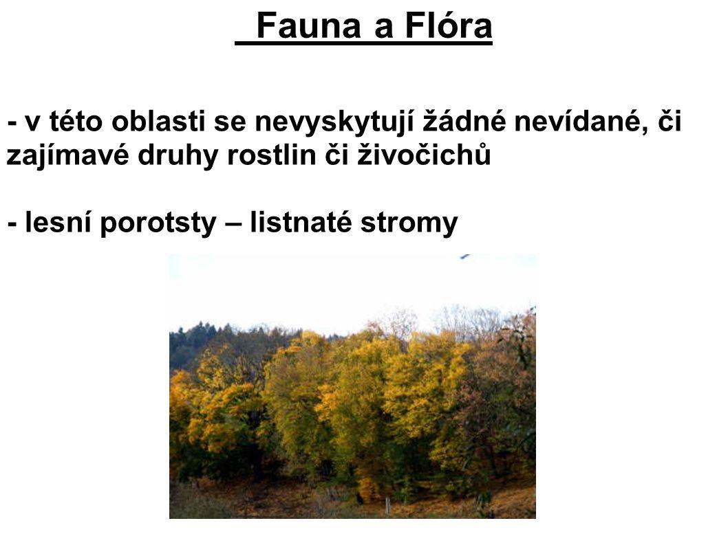 Fauna a Flóra - v této oblasti se nevyskytují žádné nevídané, či zajímavé druhy rostlin či živočichů - lesní porotsty – listnaté stromy