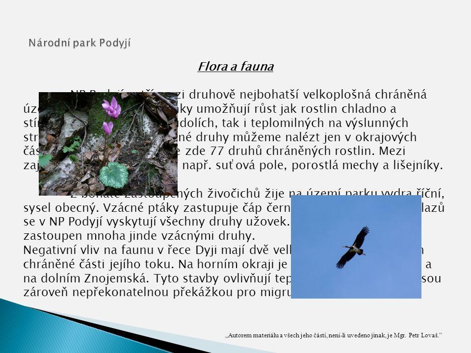 """""""Autorem materiálu a všech jeho částí, není-li uvedeno jinak, je Mgr. Petr Lovaš."""" Flora a fauna NP Podyjí patří mezi druhově nejbohatší velkoplošná c"""