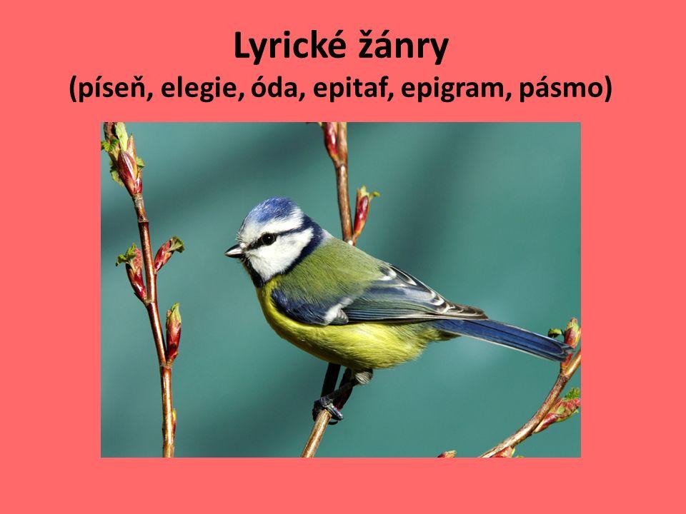 Lyrické žánry (píseň, elegie, óda, epitaf, epigram, pásmo)